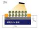 半導体ナノ結晶を用いて光電流増幅効果の高い電界効果トランジスタを作製