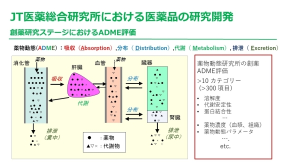 人体の各臓器と薬物動態(ADME)の関わり