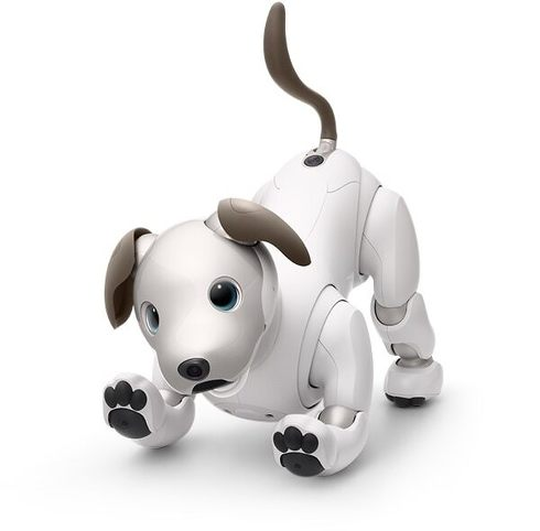 ソニーが開発した犬型ペットロボット「aibo」[クリックして拡大]出典:ソニー