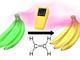 野菜や果物が放出するエチレンを常時モニタリングできる小型センサーを開発