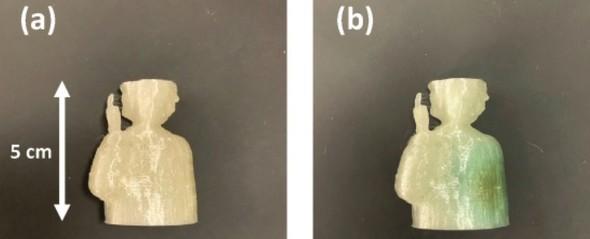 3Dプリントされた線量計。(a)照射前/(b)1kGyのX線(100kV連続源)を照射した後。(b)の青緑色の着色は線量計の照射部分を示している