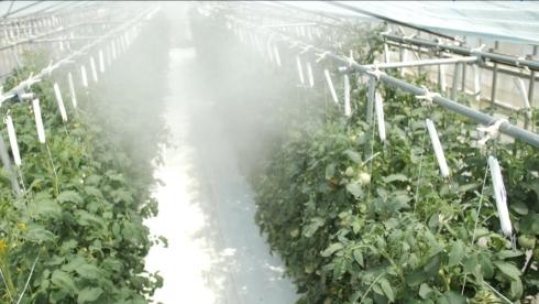 蒸発熱を利用した温度制御用および加湿による湿度制御用のミスト