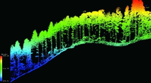 森林の状態をCTスキャンのような断面図で見ることも可能
