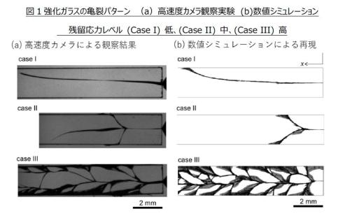 強化ガラスの亀裂パターンの高速度カメラによる観察実験と数値解析によるシミュレーションの比較