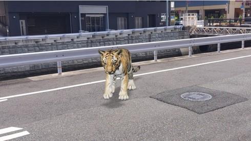 NEXT CG VIEWERへアップロードした3DモデルをAR空間で確認することも可能だ