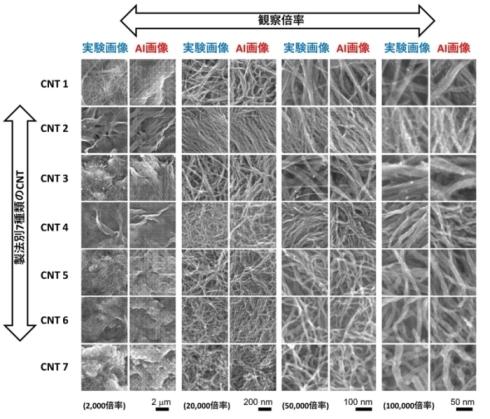 実際に製造したCNT膜と今回開発したAI技術で生成したCNT膜の構造画像の比較