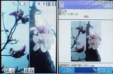 sa_noda4.jpg
