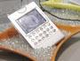 「世界最薄携帯」も投入——NECの中国攻略法とは?