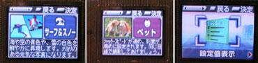 sa_d3.jpg