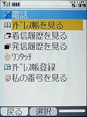 sa_t4.jpg