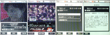 sa_no2.jpg