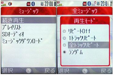 sa_sh12.jpg