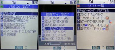 sa_pp15.jpg