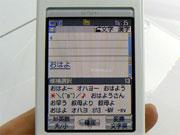 sa_dd18.jpg