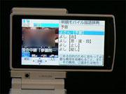 sa_f11.jpg