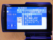 sa_f02.jpg
