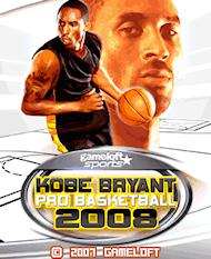 プロバスケットボール2008
