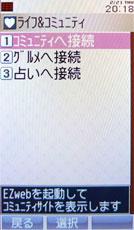 sa_au13.jpg