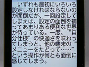 sa_f08.jpg