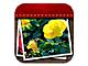 写真を時系列で管理できるiPhone用アプリ「かんたん写真管理 PHOG PHOG」