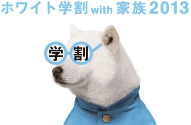 yo_wgw01.jpg