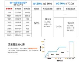 kn_yamane14041_14.jpg