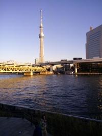 風景を撮影