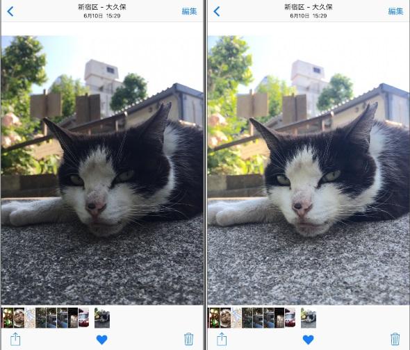 左が撮影したときの元画像。右がほんのちょっといじった画像