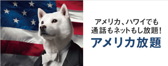 アメリカ放題
