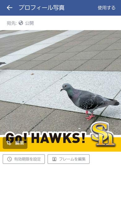 「Go! HAWKS!」のフレームが追加されました
