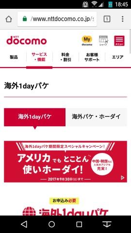 海外1dayパケのWebサイト