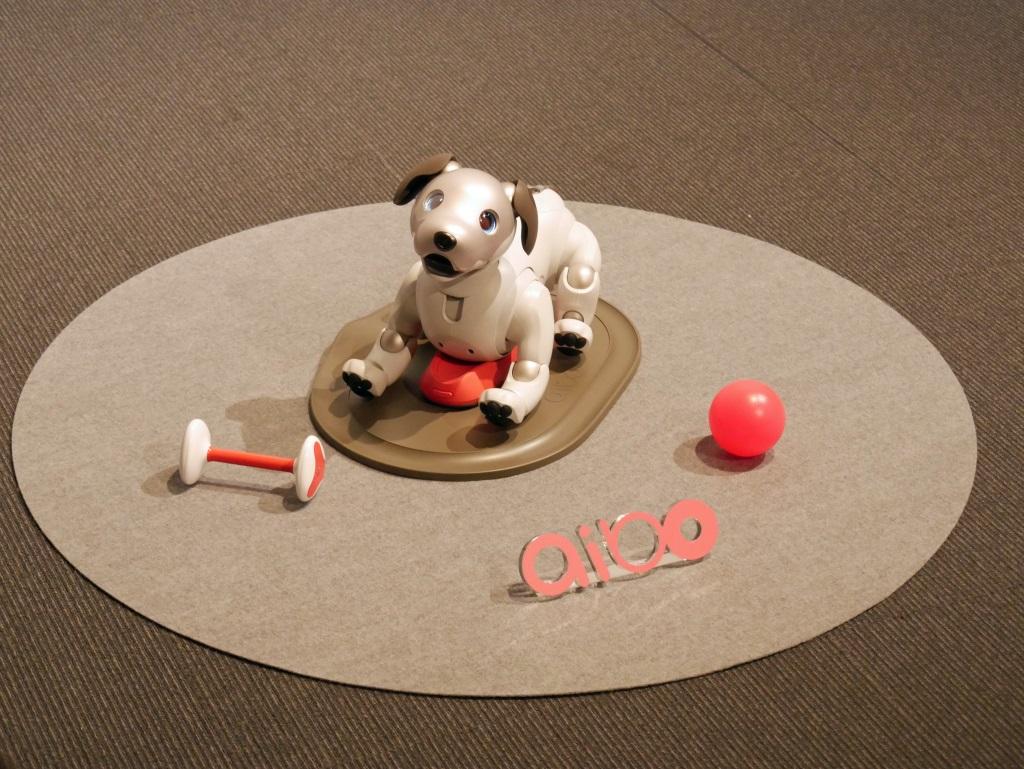 ソニーの犬型ロボット「aibo(アイボ)」復活 1月11日発売