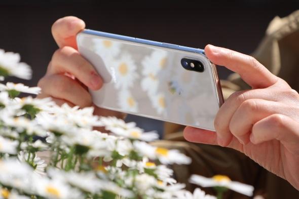 iPhoneで春を捉えるのである