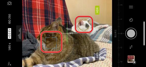 ProCamera.ProCamera.は緑の枠がフォーカス、黄色い枠が露出