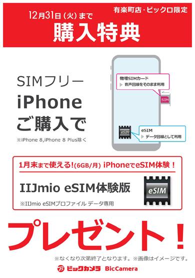 ビックカメラのeSIM対応SIMロックフリー版iPhone購入キャンペーンビックカメラのeSIM対応SIMロックフリー版iPhone購入キャンペーン