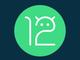 「Android 12」の初開発者プレビュー公開 Pixel 3以降のPixelシリーズにインストール可能