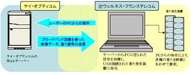yu_kopti_01.jpg