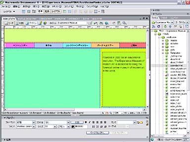 sk_macromedia_07.jpg
