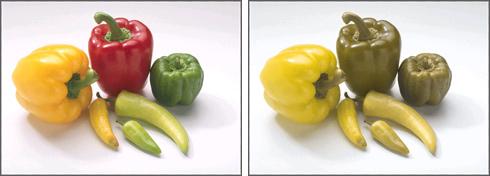 ピーマンの見え方の違いの例