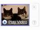 米Yahoo!のSearchMonkey、検索ページ内ビデオ再生が可能に