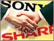 シャープ、ソニーとの液晶合弁化準備で新会社