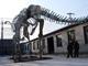 ミイラ化石「ダコタ」日本初公開 「恐竜2009」7月開幕
