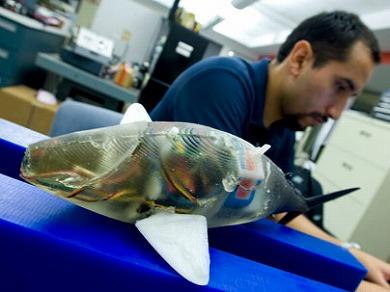 ah_robofish2.jpg