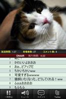 ah_nico2.jpg