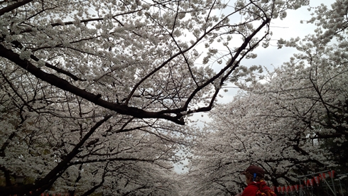 02_ueno1.jpg