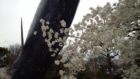 09_kujira3.jpg