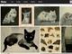 FlickrとInternet Archive、1400万点以上の検索可能な歴史的画像プロジェクト
