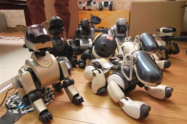 """製造元・ソニーに捨てられたロボット犬「AIBO」……""""治療""""にあたる元エンジニア集団の""""使命感"""" (1/5) - ITmedia ニュース"""