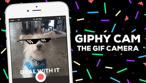 giphy 1