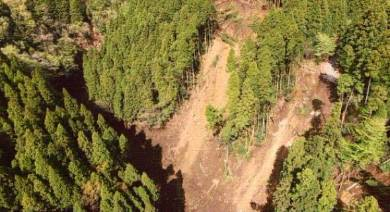 国土地理院が公開した南阿蘇村の土砂災害の写真